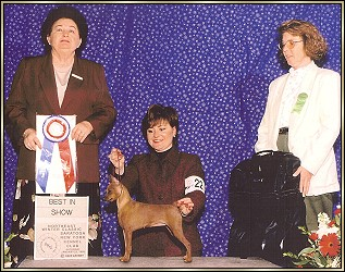 Sable - Best in Show